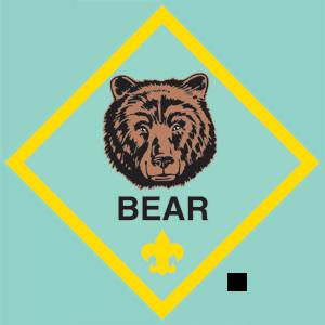 Cub Pack 285 Camp Hill PA Bear Cubs